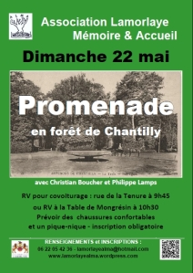 affiche-foret-A4