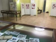 l'expo et des originaux : carnet et dessins de Véronique